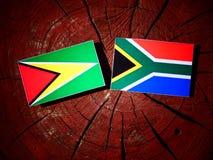 Guyana flaga z południe - afrykanin flaga na drzewnym fiszorku odizolowywającym Obraz Stock