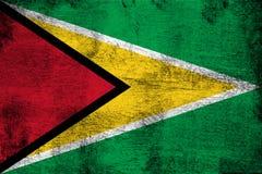 Guyana vector illustration