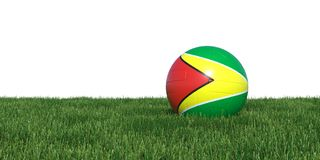 Guyana Guyanese flag soccer ball lying in grass world cup 2018. Isolated on white background. 3D Rendering, Illustration Stock Photography