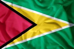 Guyana stock illustration