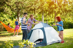Guys and girl in woods raises tent Royalty Free Stock Images