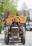 Guys Selling Sacks of Potatoes and Onions on Tractor Royalty Free Stock Photo