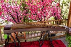 Guzheng instrument på bakgrunden av härliga blomningblommor Det är ett forntida kinesiskt klassiskt instrument royaltyfri foto
