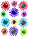Guzików Kwiaty Zdjęcie Stock