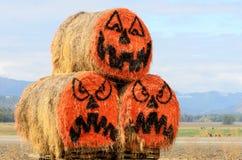 GV Pumpkins Royalty Free Stock Image