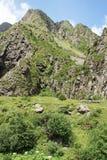 Gveleti High Valley, Caucasus Mountains, Georgia Royalty Free Stock Photo