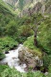 Gveleti High Valley, Caucasus Mountains, Georgia Royalty Free Stock Photos
