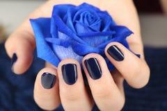 Gwóźdź sztuki pojęcie Piękna żeńska ręka trzyma błękit róży zdjęcie stock