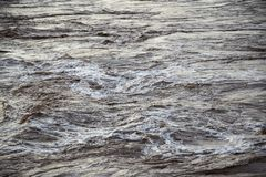 Gwałtowni w popielatej zimnej wodzie zdjęcie royalty free