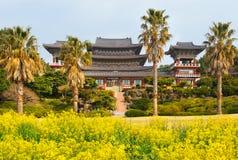 Gwałt kwitnie przy sławną Yakcheonsa Buddyjską świątynią Obraz Royalty Free