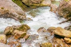 Gwałtowni na Tallulah rzece, dziąsła Obrazy Royalty Free