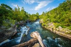 Gwałtowni w Potomac rzece przy Great Falls, widzieć od Olmsted Są fotografia royalty free
