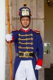 Gwardia prezydencka w prezydenckim pałac, Obraz Stock