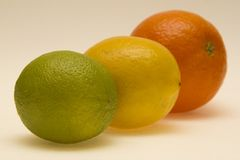 Orange, lemon and lime fruits royalty free stock image