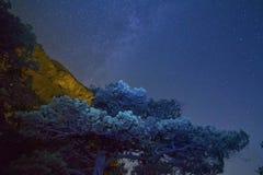gwiaździsta noc Obraz Royalty Free