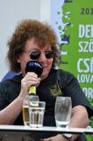 Gwiazda rocka podczas konferenci prasowej Fotografia Royalty Free