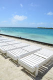 Gwiazdowa Rybia wyspa, Belize Fotografia Stock