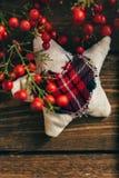 Gwiazdowe Bożenarodzeniowe tkaniny sosny gałąź Zdjęcia Stock