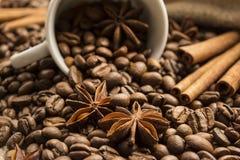 Gwiazdowy anyż i cynamon na tle kawowe fasole Zdjęcia Stock