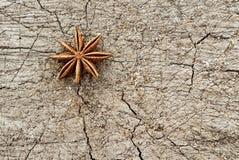 Gwiazdowy anyż na drewnie Zdjęcie Stock