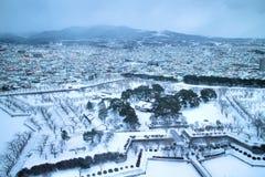 Gwiazdowy park w zimie zdjęcie royalty free
