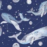 Gwiazdowy wieloryb akwareli wzór ilustracji