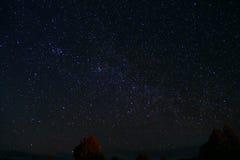 Gwiazdy w nocy z drzewami Zdjęcia Royalty Free