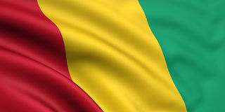 gwinea bandery Zdjęcie Stock