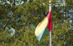 Gwinei Bissao flaga w przodzie Narody Zjednoczone Lokuje w Nowy Jork Fotografia Royalty Free