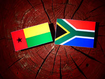 Gwinei Bissau flaga z południe - afrykanin flaga na drzewnego fiszorka isola Zdjęcia Stock