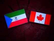 Gwinei Równikowej flaga z kanadyjczyk flaga na drzewnym fiszorku odizolowywającym zdjęcie royalty free