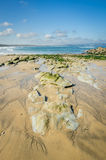 Gwithian beach near godrevy lighthouse Royalty Free Stock Images
