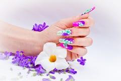 Gwoździe dekorowali z kwiecistymi przygotowaniami dla kolorowej wiosny a Obraz Stock