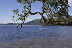 Fishing in a Scottish Loch royalty free stock image