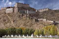Gyantse Fort in Tibet Royalty Free Stock Photo