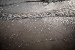 Gyckel på stranden Arkivfoto