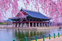 Gyeongbukgung Palace in South Korea. stock photo