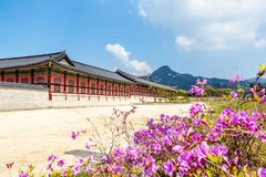 Gyeongbokgung Palace in Seoul, South Korea. At spring. Popular destination for travel in Asia stock photo