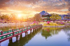 Gyeongbokgung palace in spring, South Korea. Gyeongbokgung palace in spring time in sunset , South Korea stock photo