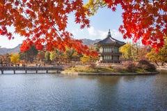 Gyeongbokgung slott i höst Arkivfoton