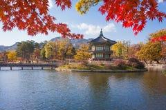 Gyeongbokgung slott i höst, Sydkorea Fotografering för Bildbyråer