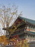 Gyeongbokgung slott i Sydkorea Royaltyfria Foton