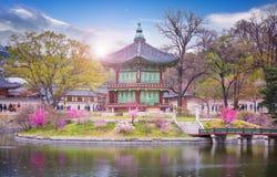 Gyeongbokgung slott i våren Sydkorea Arkivfoto
