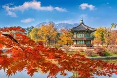Gyeongbokgung slott och mjuk fokus av lönnträdet i hösten, Kore Royaltyfri Foto