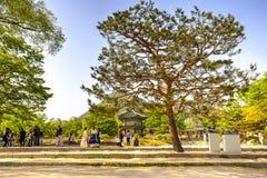 Gyeongbokpaleis, Seoel, Korea Royalty-vrije Stock Afbeeldingen
