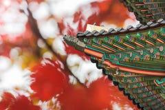 Gyeongbukgung屋顶和秋天背景在汉城,韩国 免版税库存图片