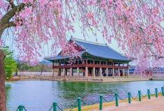 Gyeongbukgung slott i Sydkorea arkivfoto