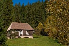 Gyimes - Transylvanian风景 免版税库存图片