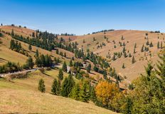 Gyimes - Transylvanian风景 免版税图库摄影