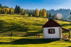 Gyimes - Transylvanian风景 免版税库存照片